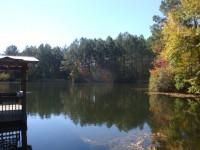 Rogers-Pond-177-1024x768
